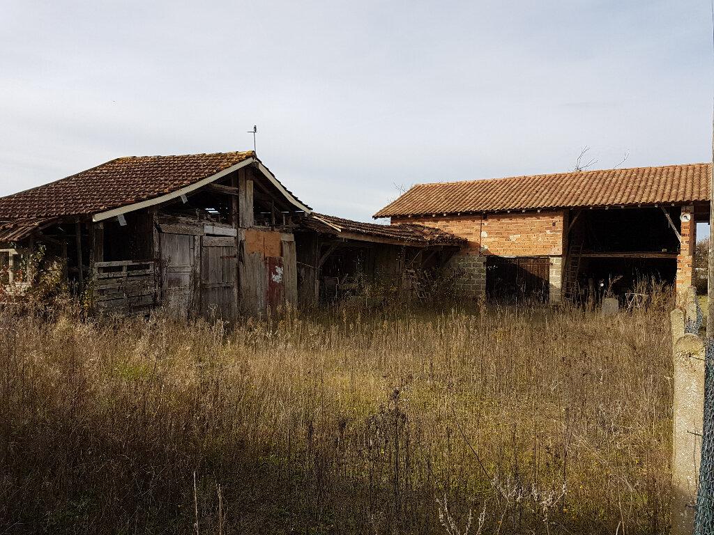 Maison à vendre 6 150m2 à Aire-sur-l'Adour vignette-4