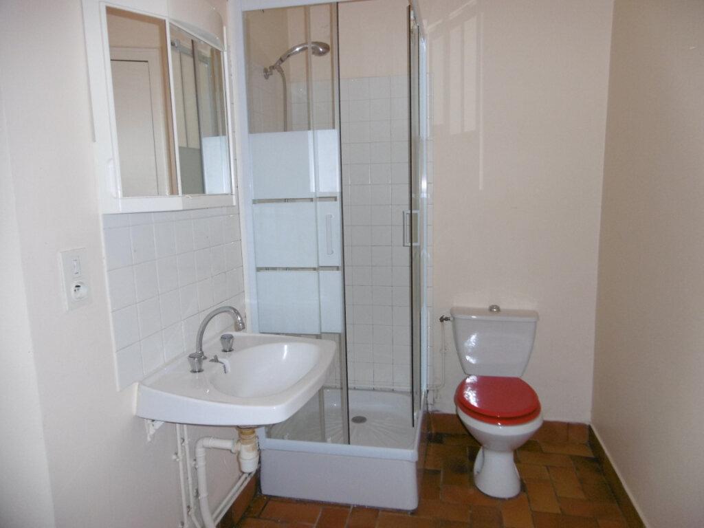 Appartement à louer 2 42m2 à Saint-Benoît-sur-Loire vignette-11
