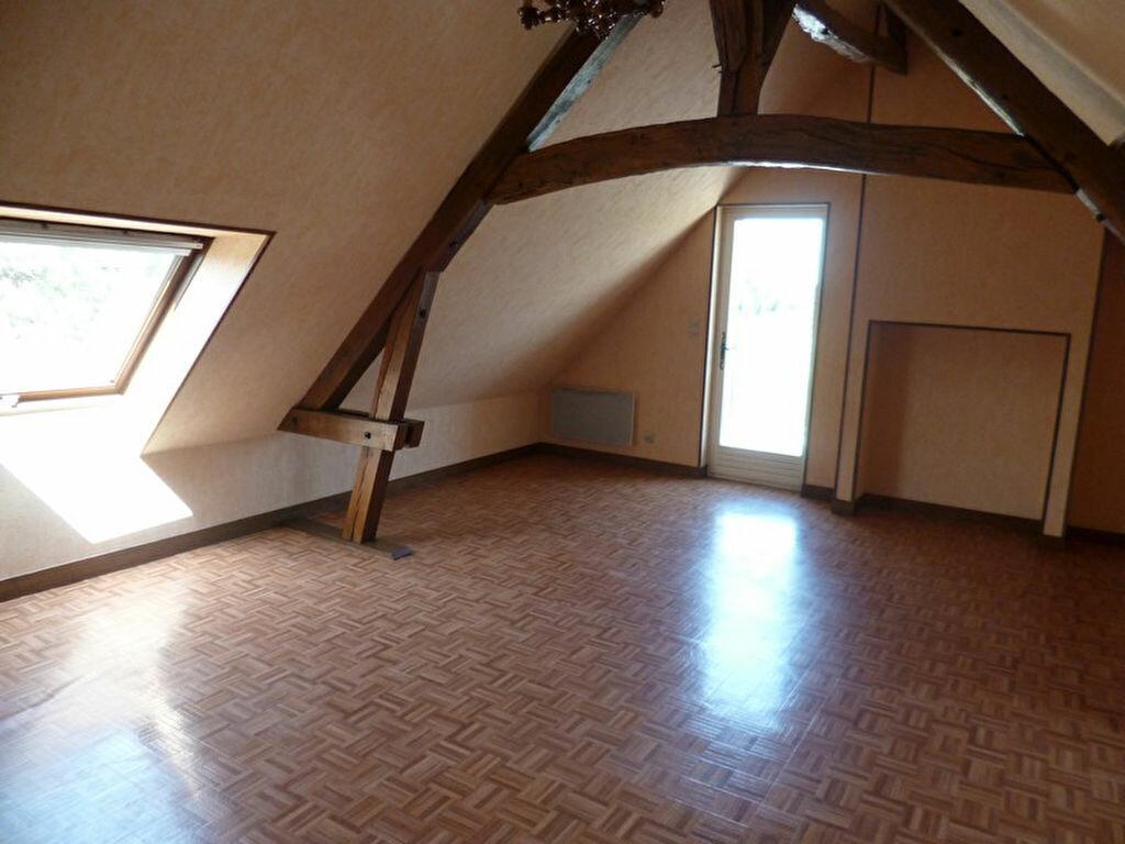 Appartement à louer 3 80m2 à Saint-Benoît-sur-Loire vignette-1