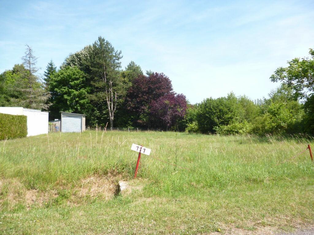 Terrain à vendre 0 908m2 à Varennes-Changy vignette-2