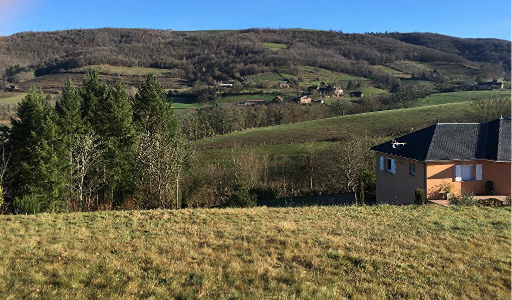 Terrain à vendre 0 3772m2 à Saint-Cyprien-sur-Dourdou vignette-2