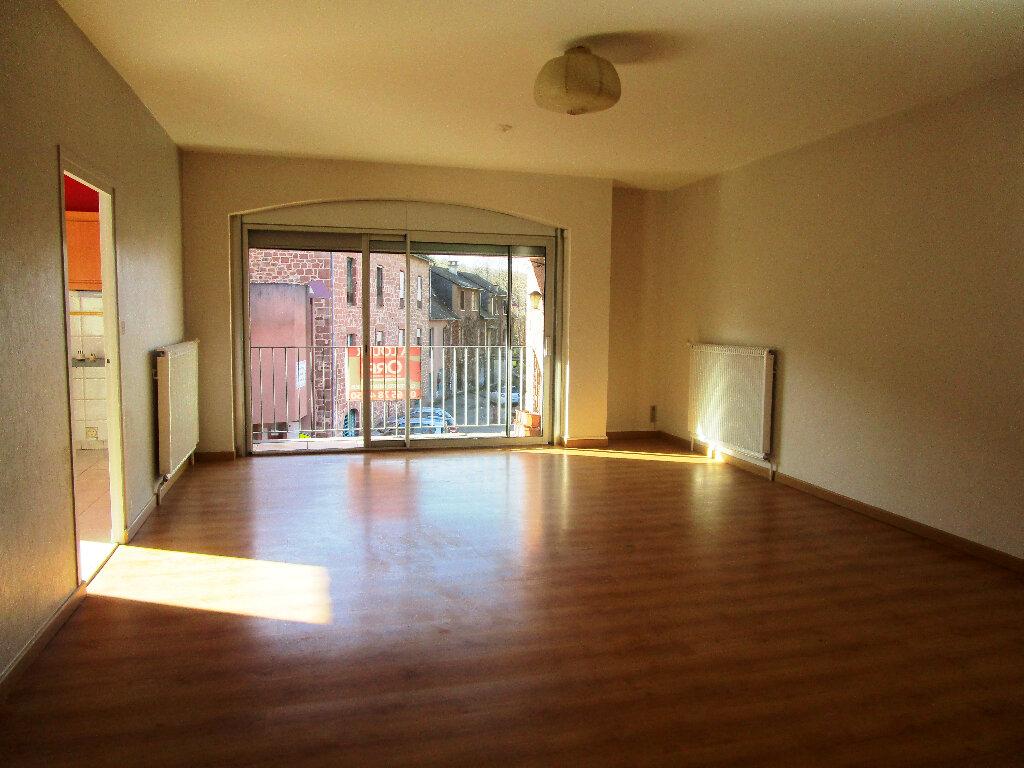 Appartement à louer 4 100m2 à Marcillac-Vallon vignette-3