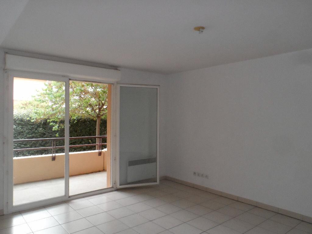 location appartement t3 fenouillet