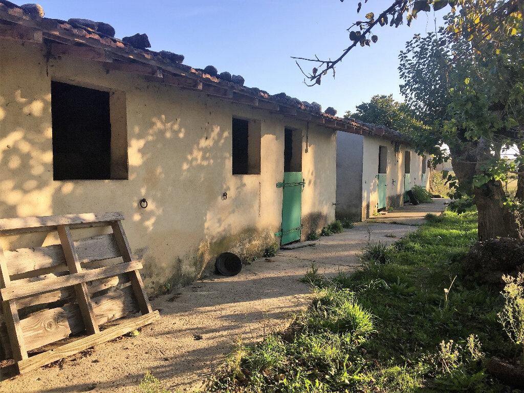 Maison à vendre 15 300m2 à Donzère vignette-6