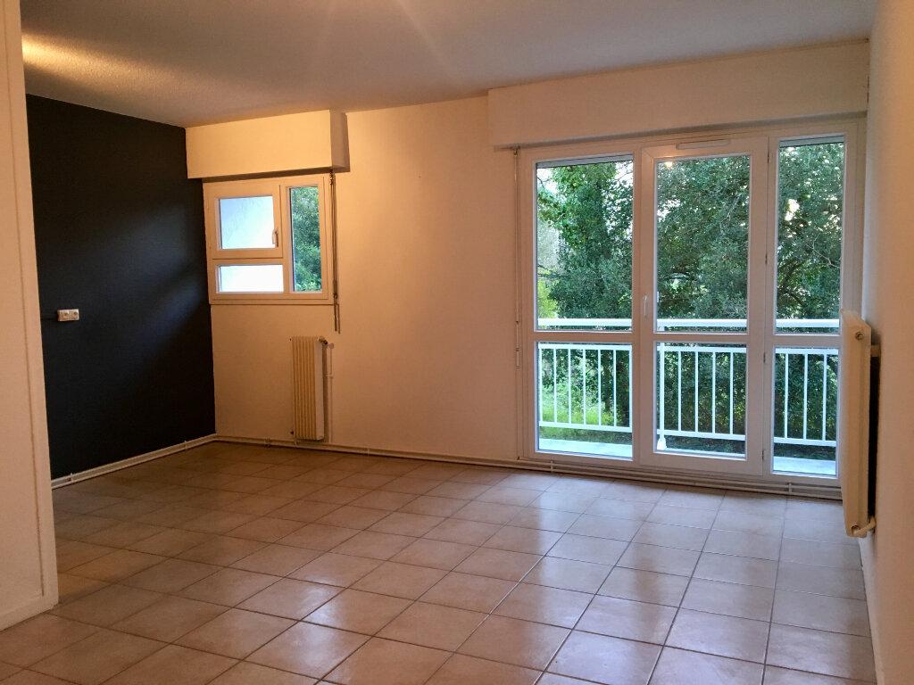 Appartement à louer 2 40m2 à Gradignan vignette-1