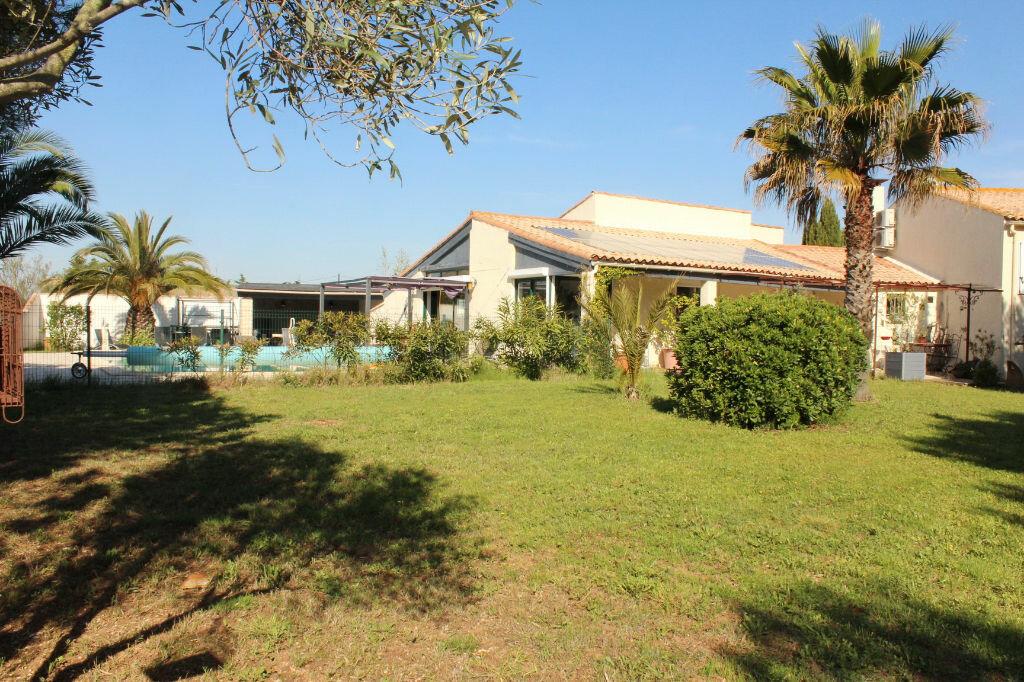 Maison à vendre 9 198m2 à Marseillan vignette-4