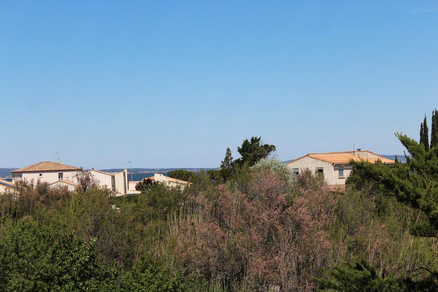Maison à vendre 4 100m2 à Marseillan vignette-14