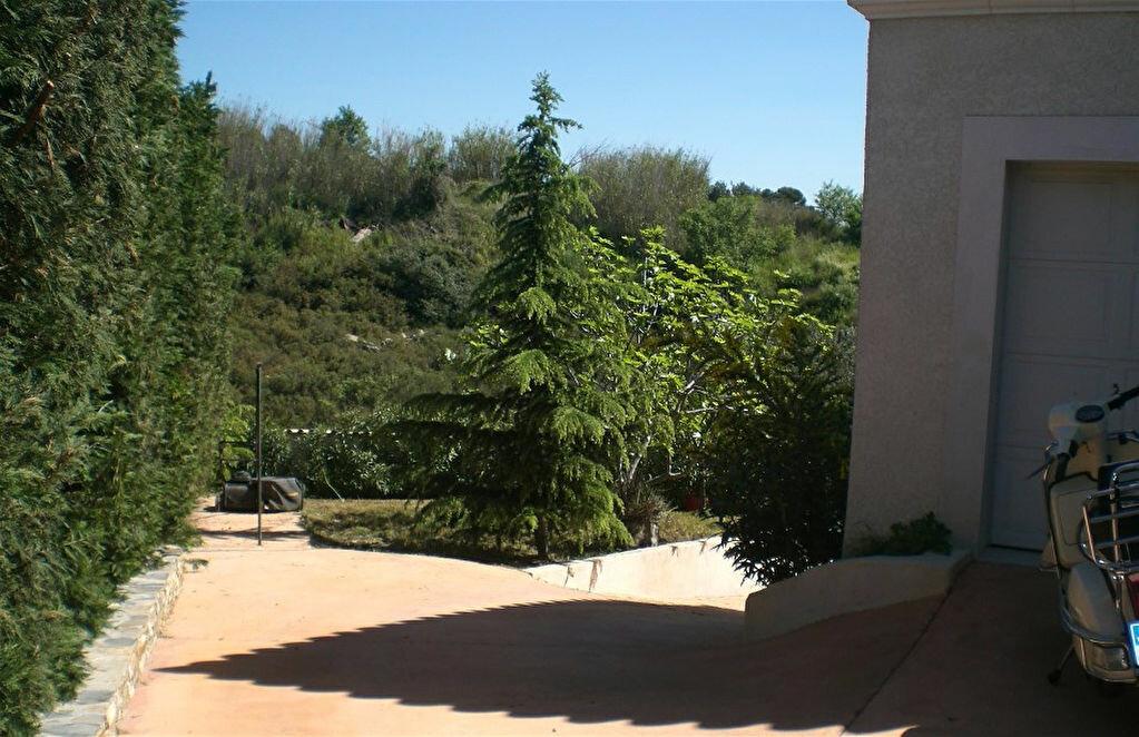 Maison à vendre 6 260m2 à Bouzigues vignette-15