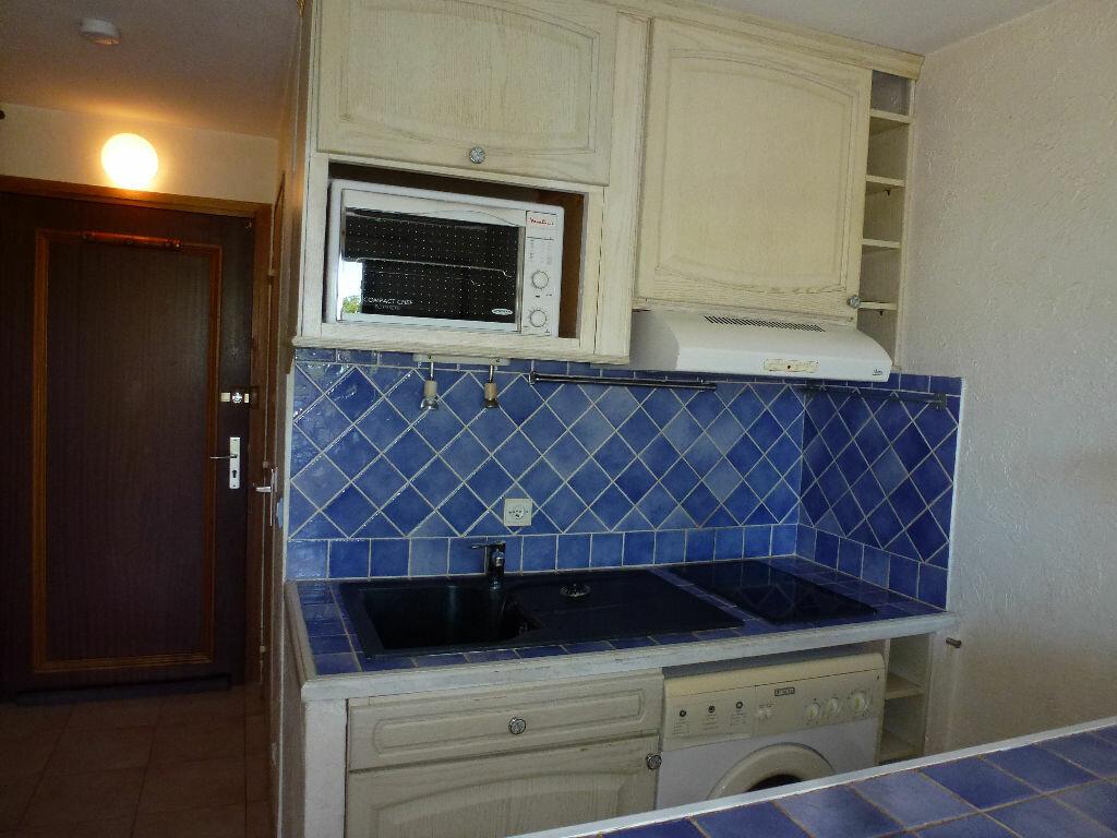 Appartement à louer 1 29.05m2 à Villeneuve-Loubet vignette-4