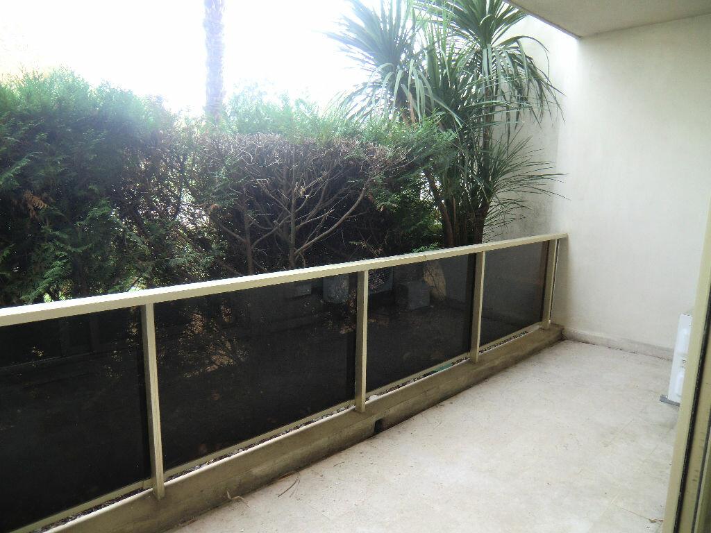 Appartement à louer 1 27.4m2 à Cagnes-sur-Mer vignette-1