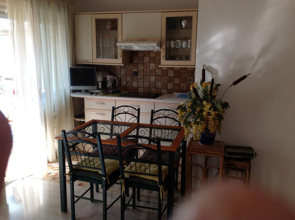 Appartement à louer 1 30m2 à Saint-Laurent-du-Var vignette-3
