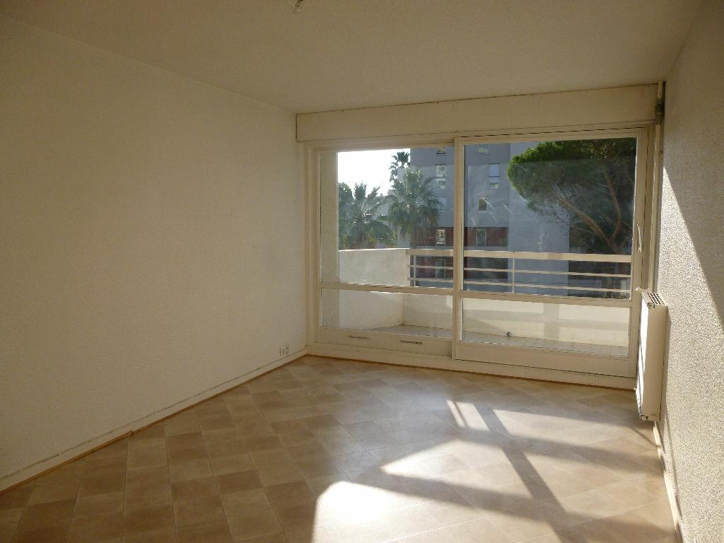 Appartement à louer 2 48m2 à Saint-Raphaël vignette-4