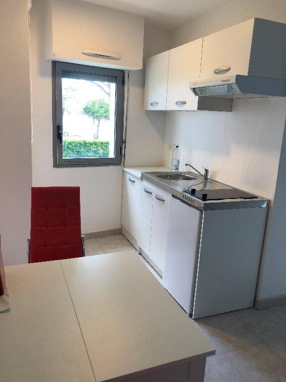 Appartement à louer 1 32.63m2 à Cagnes-sur-Mer vignette-4