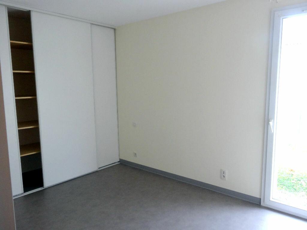 Appartement à louer 3 61m2 à Albi vignette-5