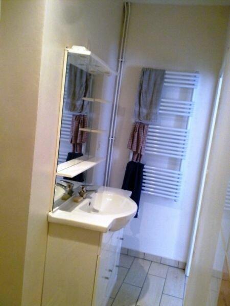 Appartement à louer 2 41m2 à Albi vignette-5