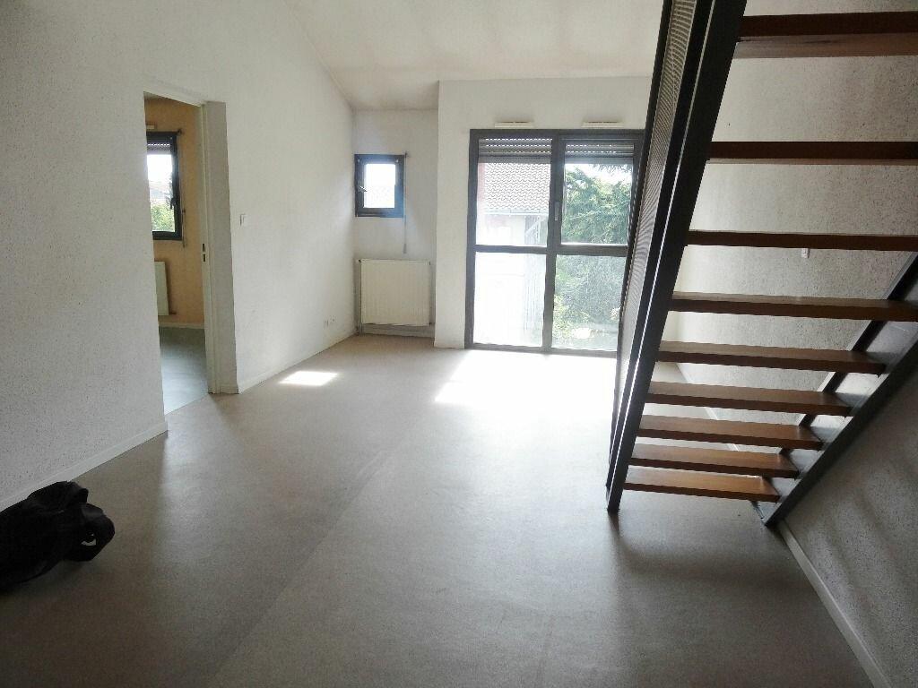 Appartement à louer 3 59m2 à Albi vignette-1