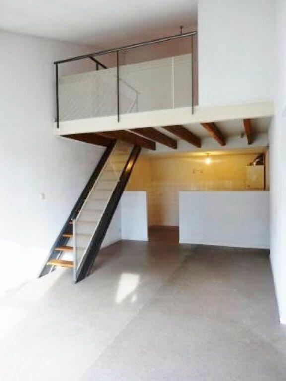 Appartement à louer 3 59m2 à Albi vignette-2