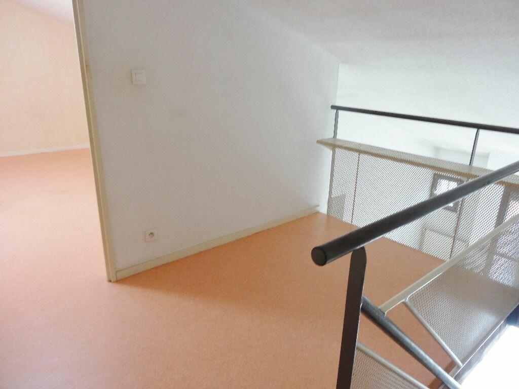 Appartement à louer 3 59m2 à Albi vignette-5