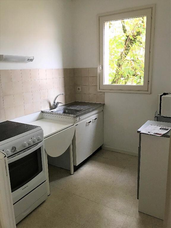 Appartement à louer 1 30m2 à Albi vignette-2
