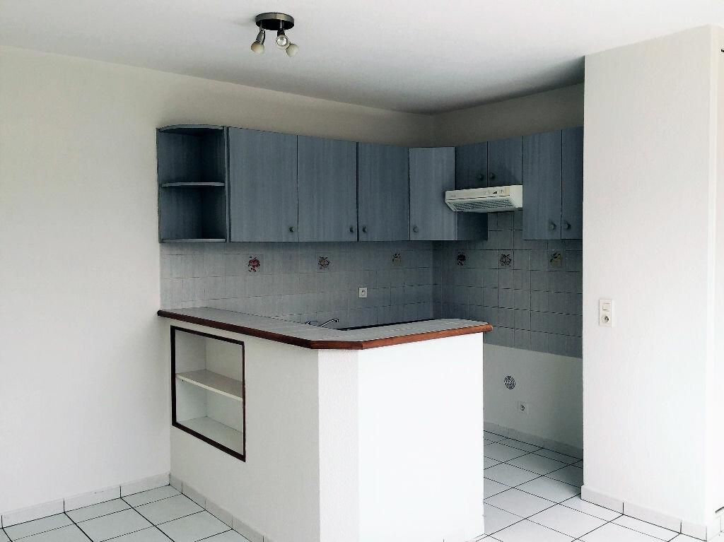Appartement à louer 2 33m2 à Albi vignette-1