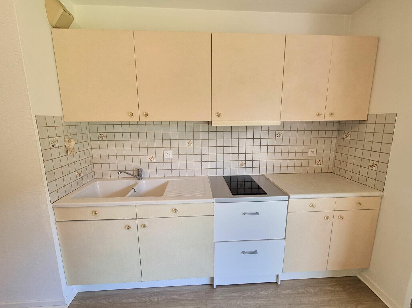 Appartement à louer 2 49m2 à Albi vignette-2