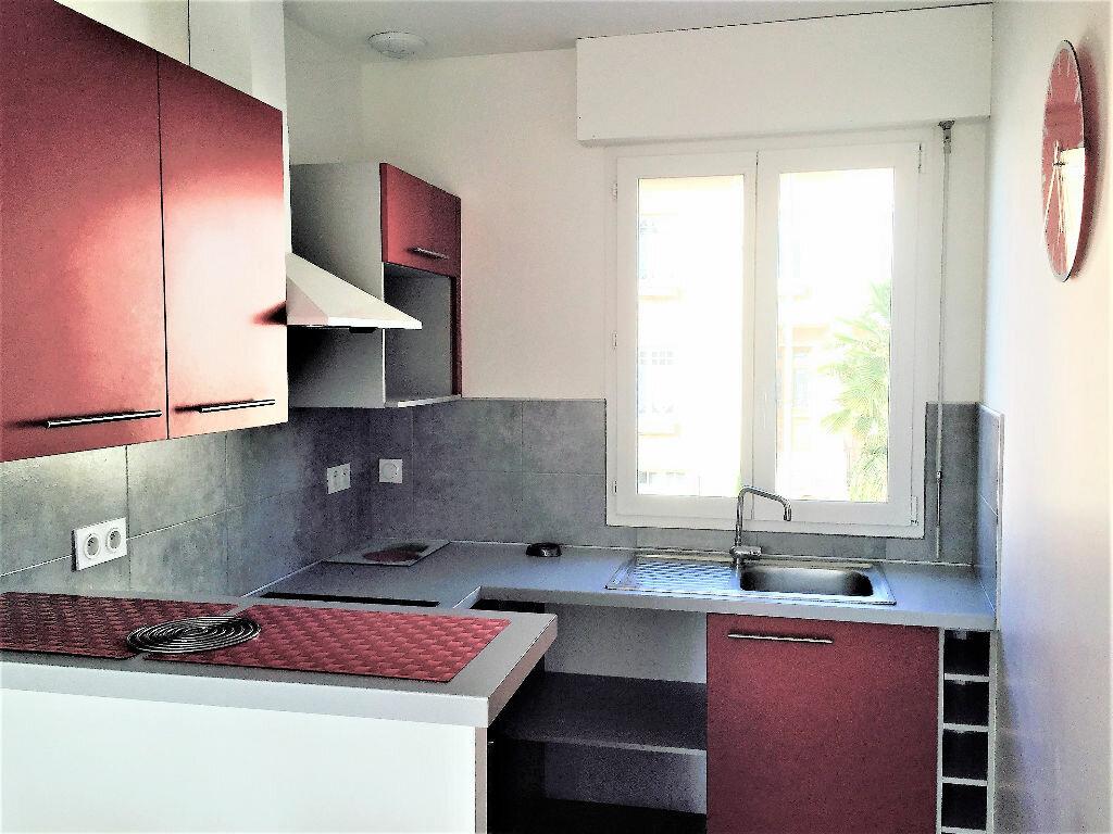 Appartement à louer 2 31m2 à Albi vignette-1