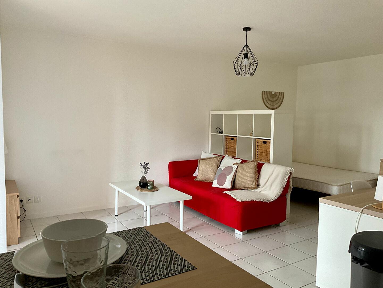 Appartement à louer 1 33m2 à Albi vignette-2