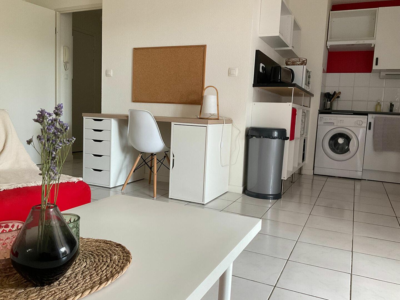 Appartement à louer 1 33m2 à Albi vignette-4