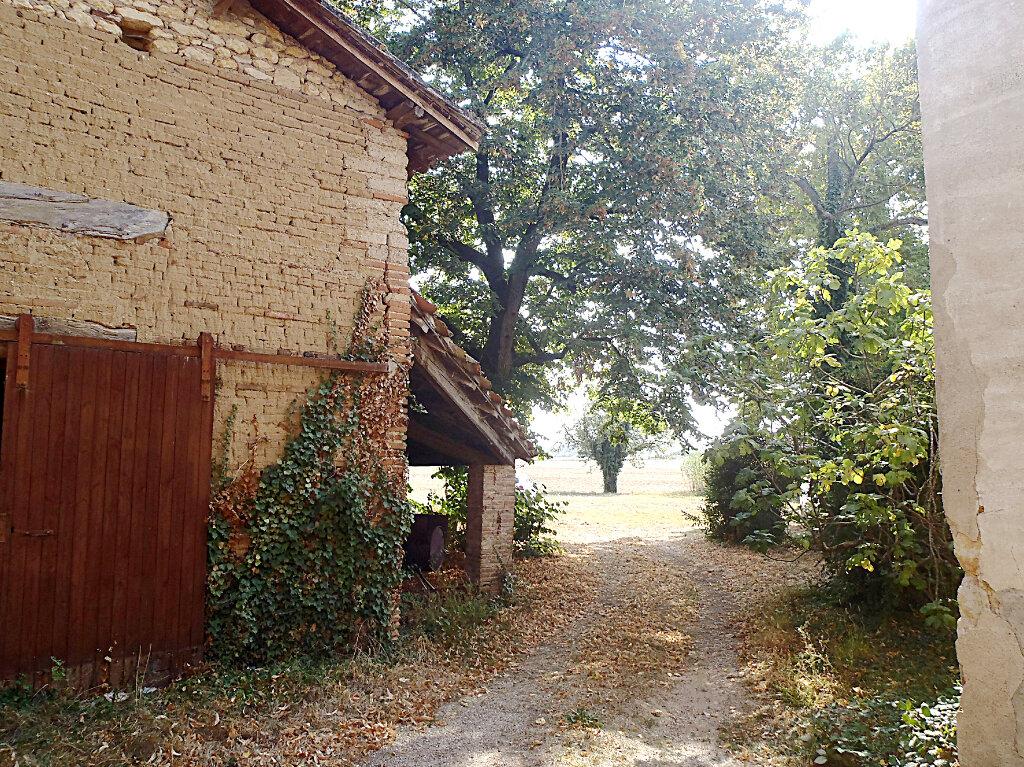 Maison à vendre 9 250m2 à Labastide-de-Lévis vignette-6