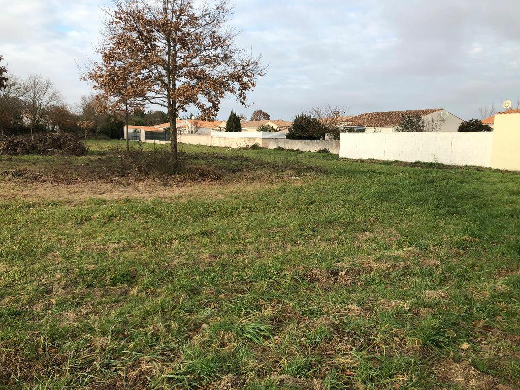 Terrain à vendre 0 4786m2 à Dolus-d'Oléron vignette-5