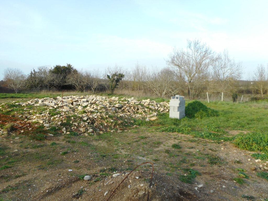 Terrain à vendre 0 389m2 à Dolus-d'Oléron vignette-3