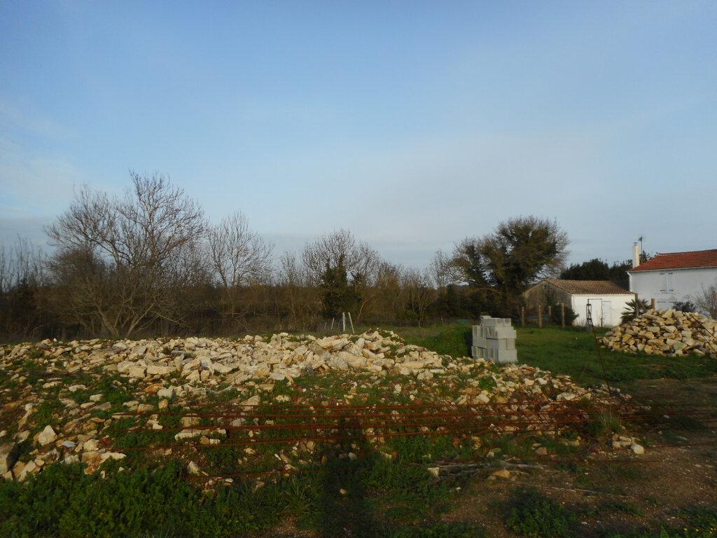 Terrain à vendre 0 389m2 à Dolus-d'Oléron vignette-5