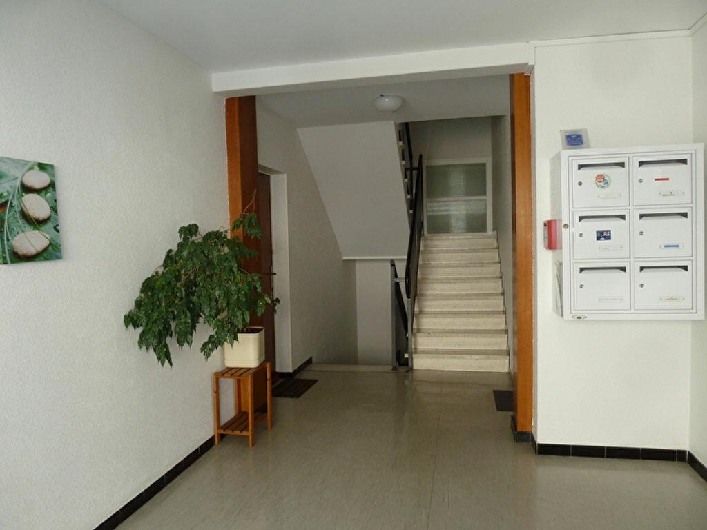 Appartement à louer 2 60m2 à Périgueux vignette-6
