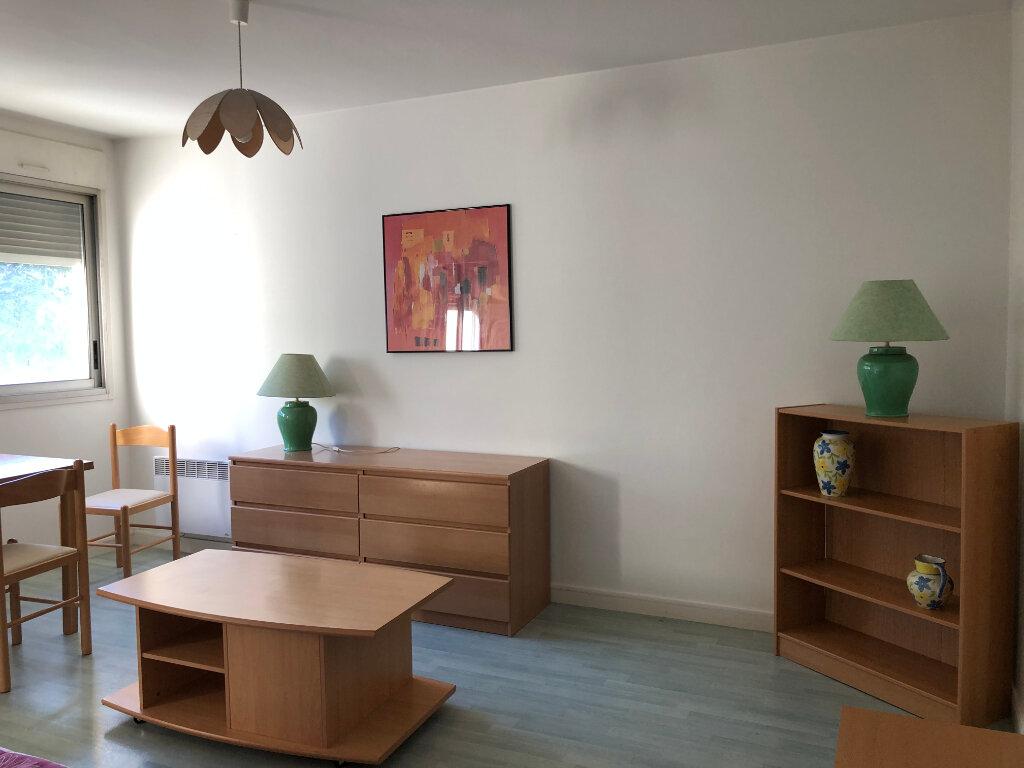 Appartement à louer 1 28m2 à Périgueux vignette-6
