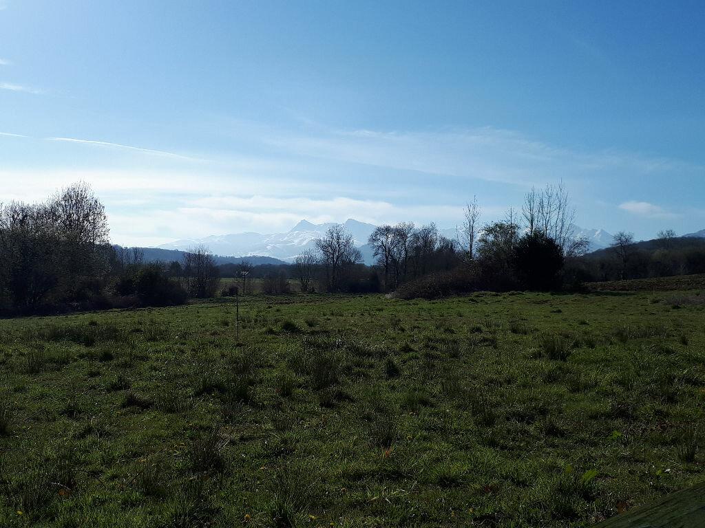 Terrain à vendre 0 1160m2 à Lamarque-Pontacq vignette-2