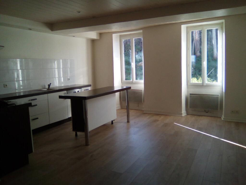 Appartement à louer 3 55m2 à Nay vignette-1