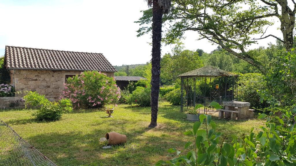 Maison à vendre 5 110m2 à Saint-Genest-de-Beauzon vignette-4