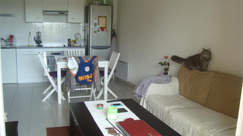 Appartement à louer 3 54.4m2 à Lunel vignette-3
