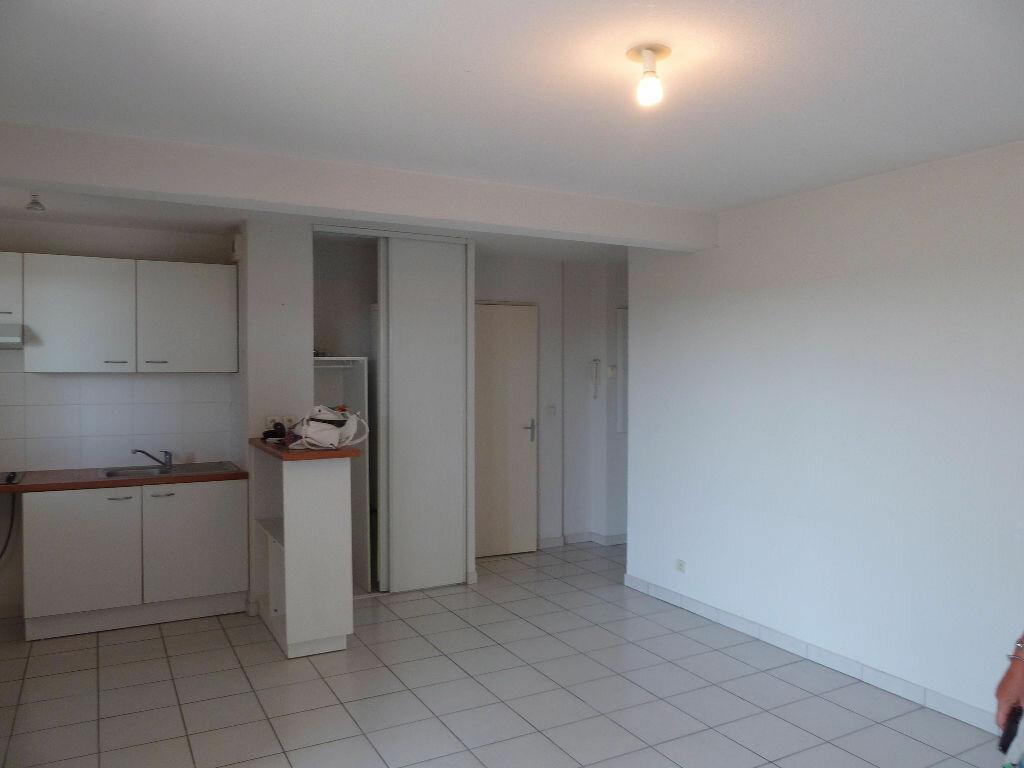 Appartement à louer 3 55.03m2 à Vauvert vignette-8
