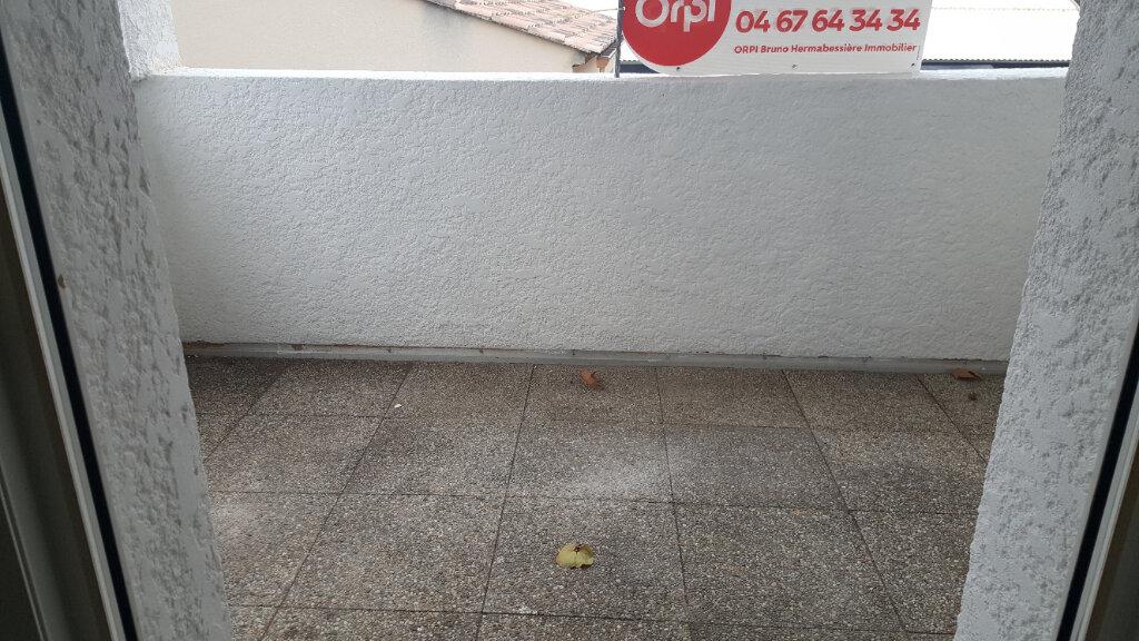 Appartement à louer 3 52.71m2 à Saint-Brès vignette-3
