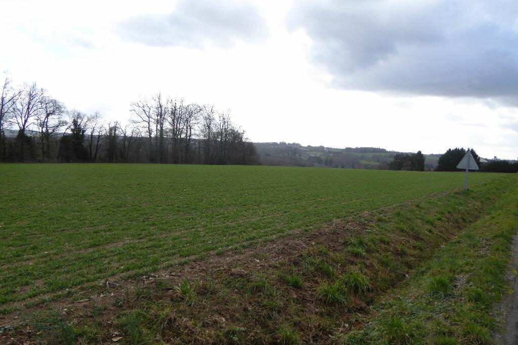 Terrain à vendre 0 2433m2 à Saint-Just-le-Martel vignette-3