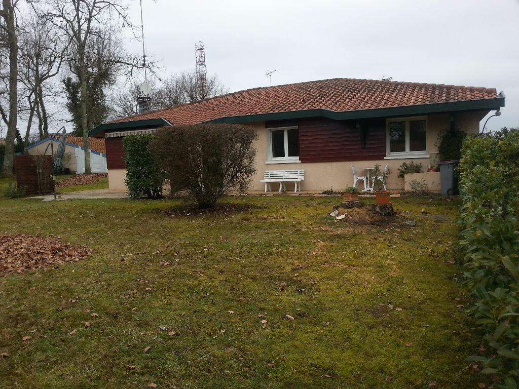 Maison à louer 5 107.47m2 à Saint-Paul-lès-Dax vignette-6