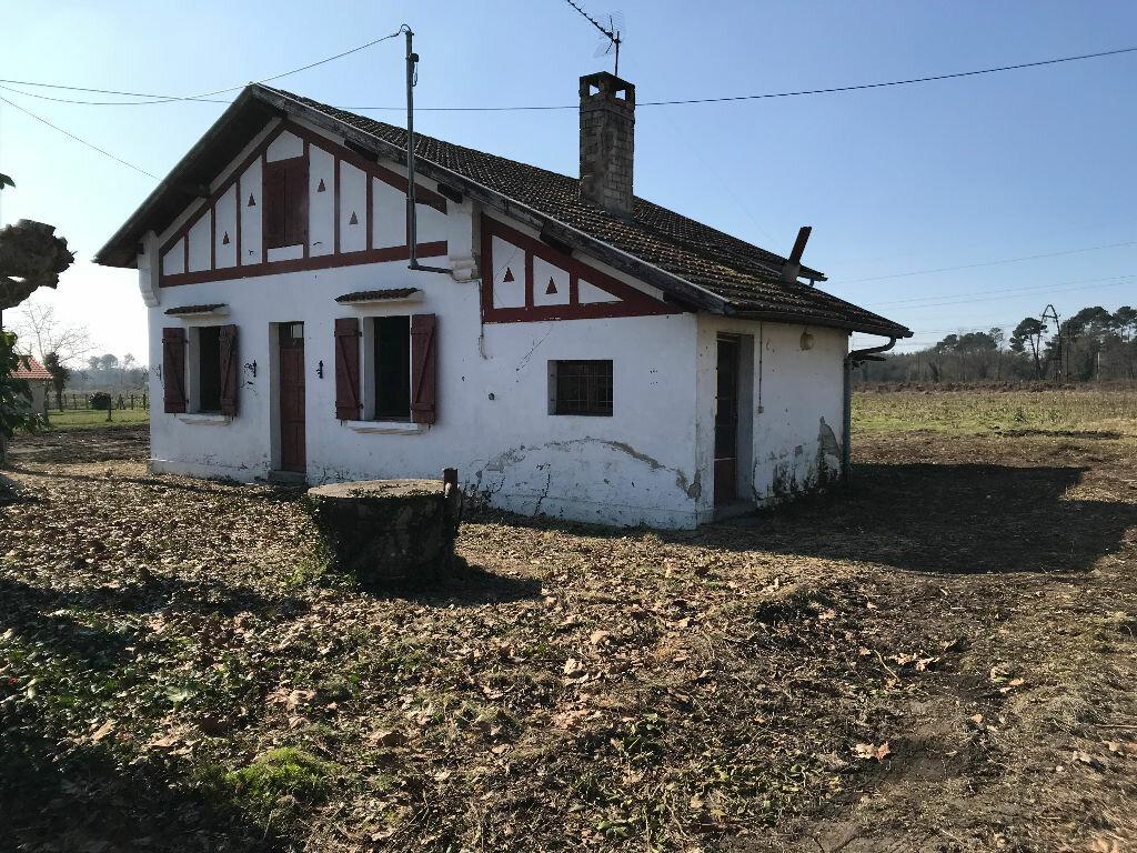 Maison à vendre 4 89m2 à Saint-Vincent-de-Paul vignette-1