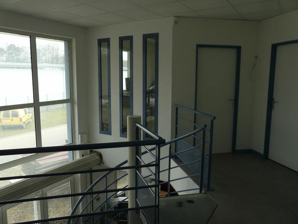 Maison à louer 5 136.89m2 à Montcourt-Fromonville vignette-5