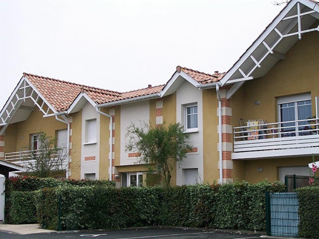 Appartement à louer 2 36m2 à La Teste-de-Buch vignette-8