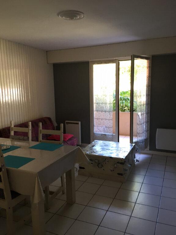 Appartement à louer 2 42m2 à Arcachon vignette-5