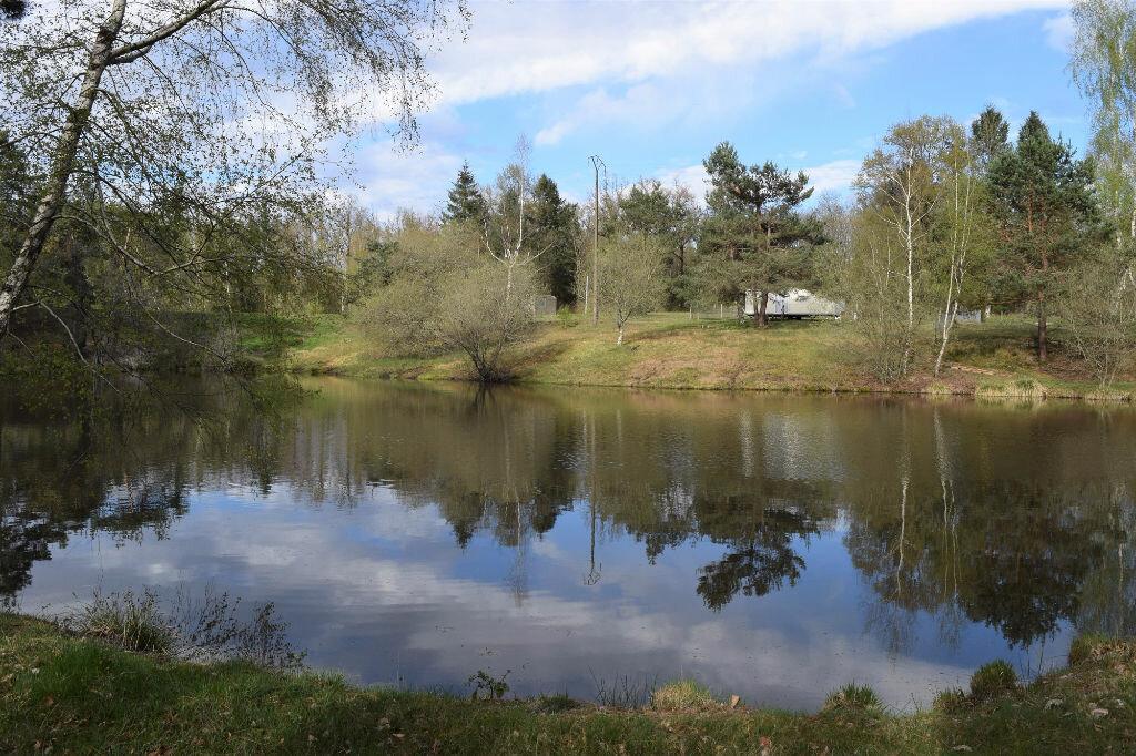 Terrain à vendre 0 18000m2 à Maisonnais-sur-Tardoire vignette-3