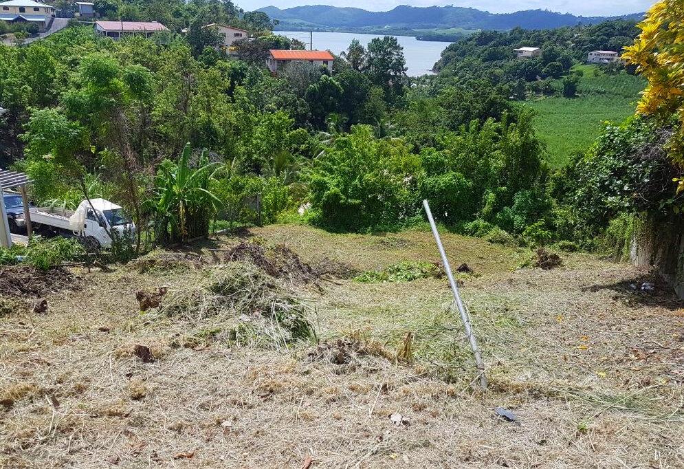 Terrain à vendre 0 795m2 à La Trinité vignette-1