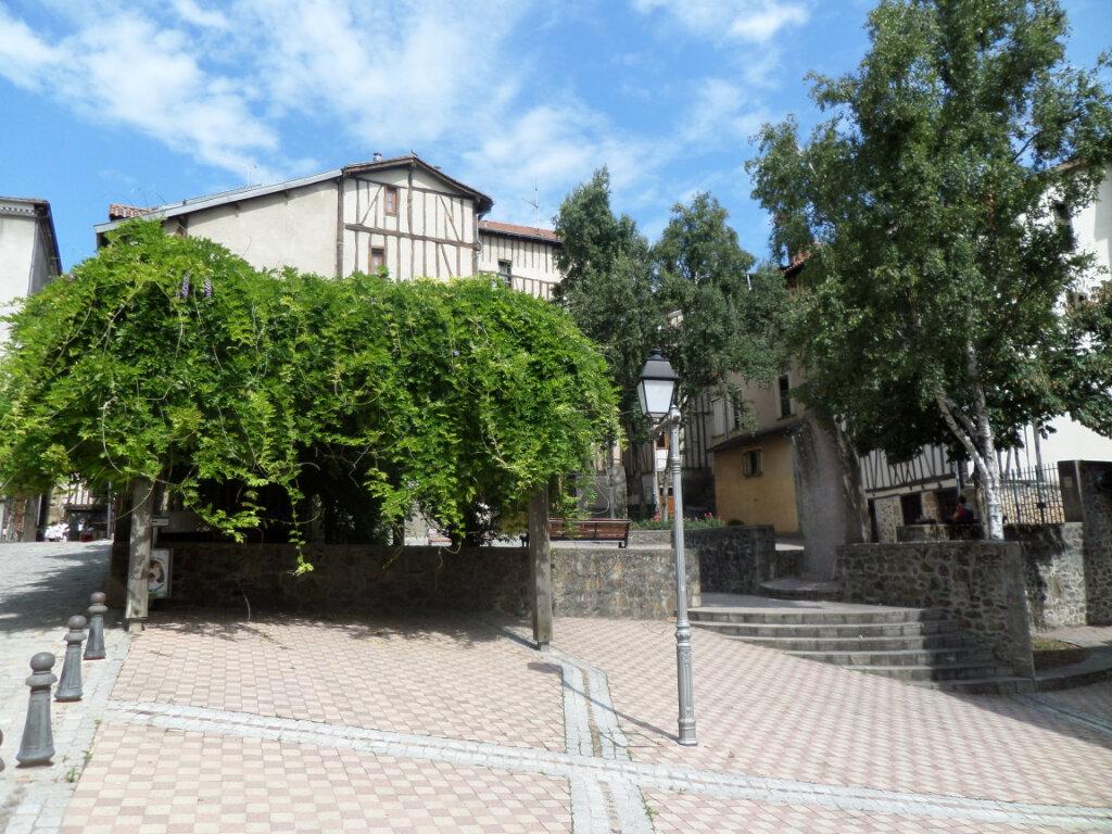 Appartement à louer 2 25m2 à Limoges vignette-4