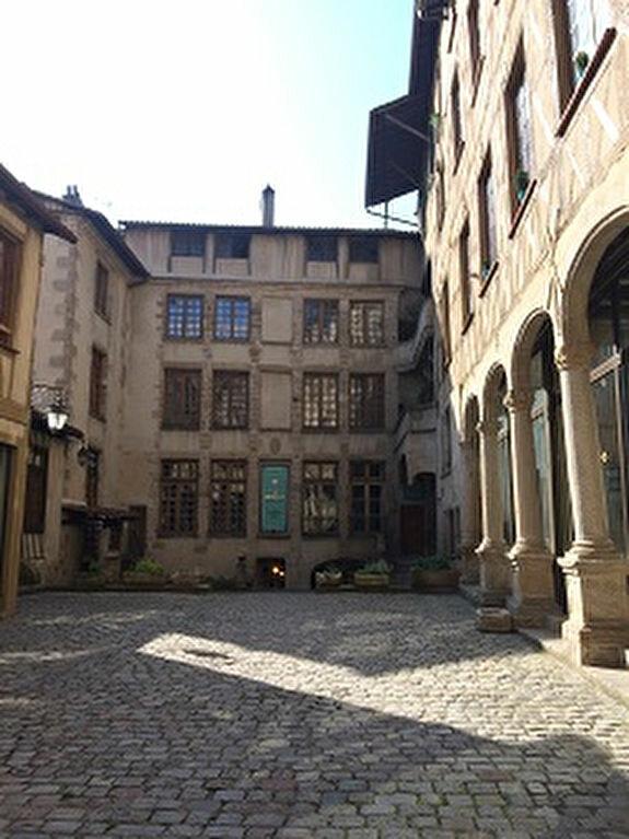 Appartement à louer 1 25.01m2 à Limoges vignette-9